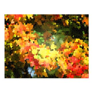 Amarelo alaranjado das folhas de bordo do outono d cartão postal