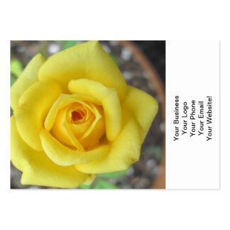 Amarelo da flor do jardim de rosas mini modelos cartao de visita