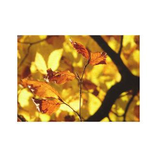 Amarelo do impressão da arte da praia das folhas