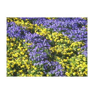 Amarelo e roxo floresce a foto por Lorette Starr W Impressão Em Tela Canvas