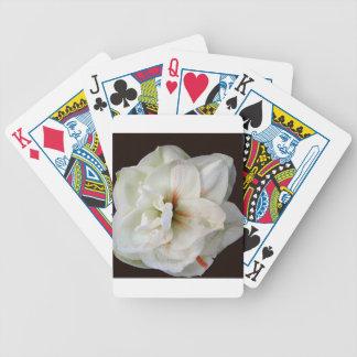 Amaryllis branco baralho para poker