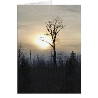 Amasa, cartão vazio do por do sol do MI