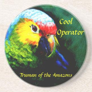 Amazon, papagaio, tropical, praia, ilha porta copos de arenito
