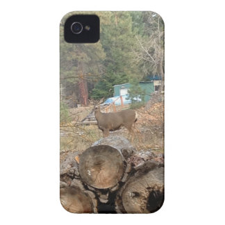 Ame o selvagem capa para iPhone