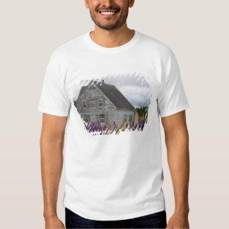 America do Norte, Canadá, Prince Edward Island, T-shirts