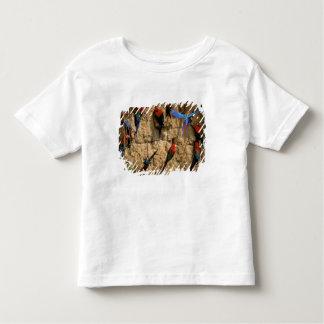 Ámérica do Sul, Peru, parque nacional de Manu, T-shirts