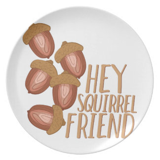 Amigo do esquilo prato de festa