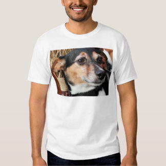 Amigo - Fox Terrier Photo-9 Camiseta