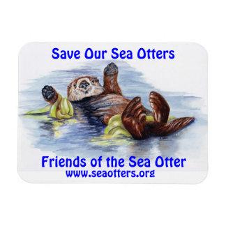 Amigos do ímã da lontra de mar