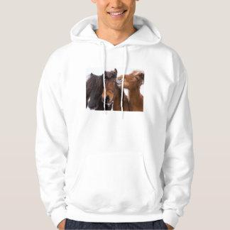 Amigos islandêses do cavalo, Islândia Moletom