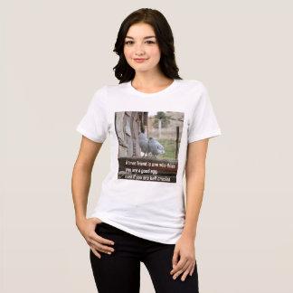 Amizade da camisa do t das mulheres