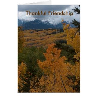 Amizade grata cartão