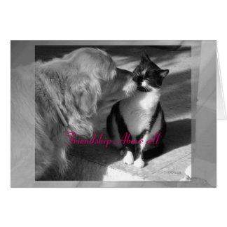 Amizade sobretudo cartão comemorativo