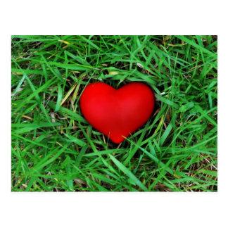 Amor a favor do meio ambiente - cartão