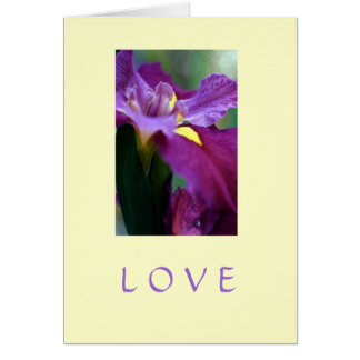 """""""Amor """" Cartão"""