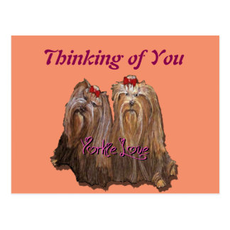 Amor de Yorkie - cartão