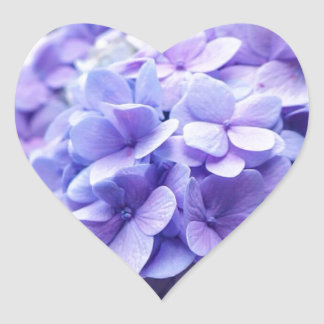 Amor do Hydrangea Adesivo Coração