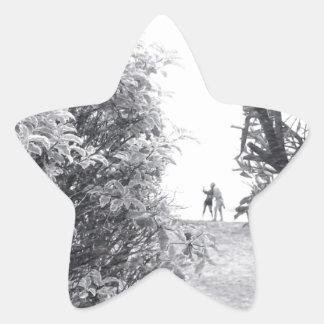 Amor em uma foto adesito estrela