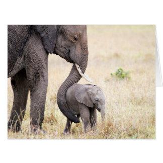 Amor maternal cartão comemorativo grande