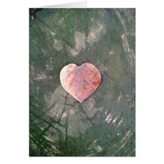 Amor natural, IIII Cartão Comemorativo