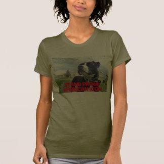 Amor verdadeiro americano de Terrier de pitbull Camisetas