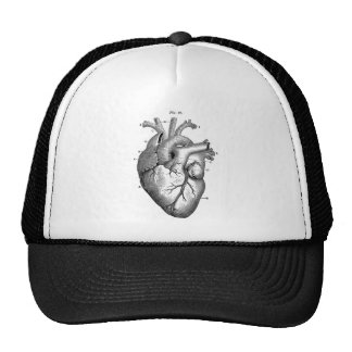 Anatomia-Coração-Imagem-Vintage Boné