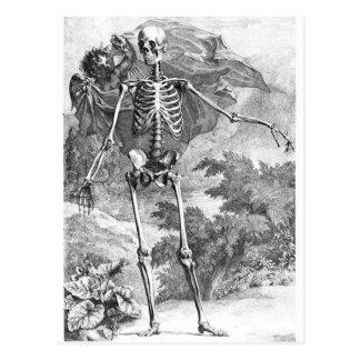 Anatomia do cartão do woodcut do vintage da morte