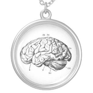 Anatomia do cérebro do vintage colar banhado a prata