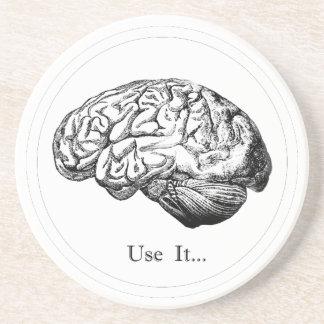 Anatomia do cérebro - use-a porta copos de arenito