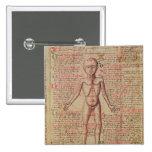 Anatomia do corpo humano bóton quadrado 5.08cm