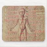 Anatomia do corpo humano mouse pad