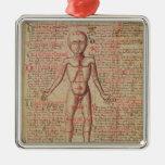 Anatomia do corpo humano ornamento quadrado cor prata
