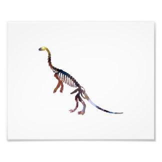 Anchisaurus Impressão De Foto