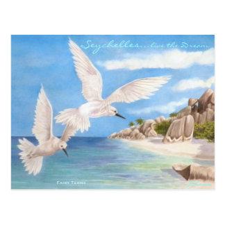 Andorinhas-do-mar feericamente cartão postal