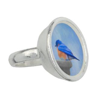 Anéis Com Foto Bluebird