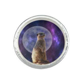 Anéis Com Imagem Meerkat no relógio de noite azul do luar,