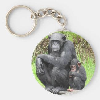 Anel chave do chimpanzé chaveiro