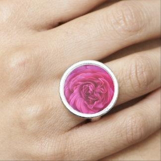 Anel Com Imagem Amor do rosa do rosa