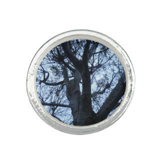Anel da fotografia da silhueta da árvore