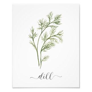 Aneto botânico do impressão da erva da aguarela foto