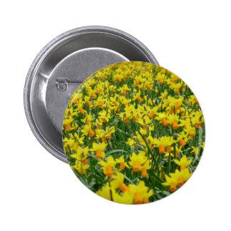 Anfitrião do botão dos Daffodils Bóton Redondo 5.08cm