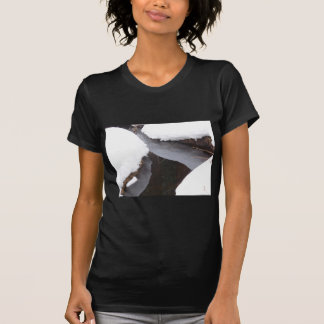 Angra congelada camiseta