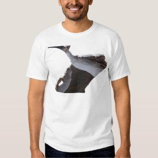 Angra congelada tshirts