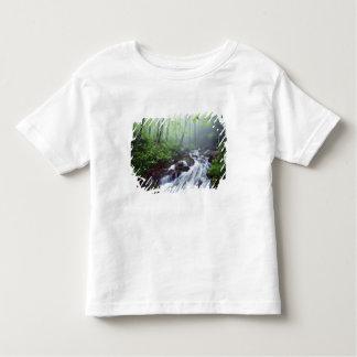 Angra da angra de Linn que conecta com nevoento Tshirts
