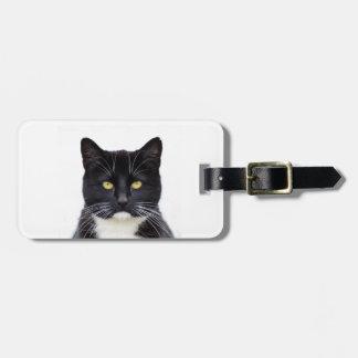Animais de estimação bonitos dos gatos pretos etiqueta de bagagem