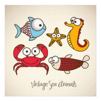 Animais de mar do vintage fotografia