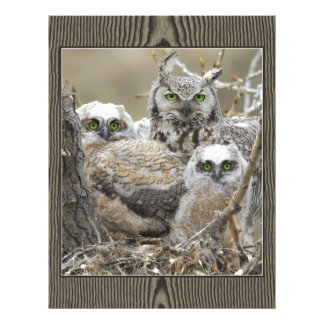 Animais dos pássaros da natureza da família da cor modelo de papel de carta