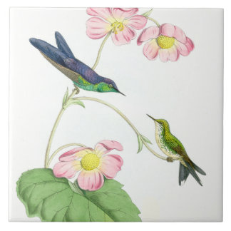 Animais florais dos animais selvagens das flores