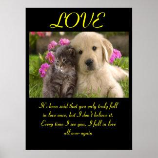 Animal 1 dos posters do AMOR