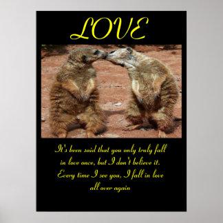 Animal 2 dos posters do AMOR